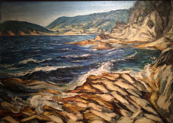 "Shmidt E. P. ""Southern coast of France"""