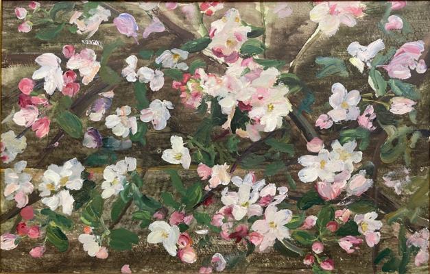 "Shurpin F. S. ""Apple tree in blossom."""