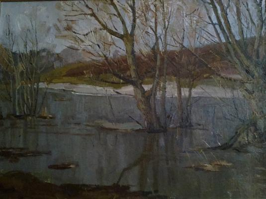 "Tretyakov Y. I. ""Gray day."""