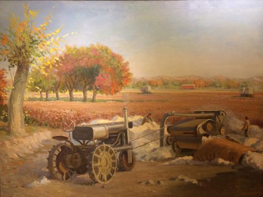 Redkin Sergey Vasilyevich - In a cotton field.