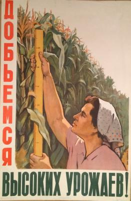 "Suryaninov R. V. ""We achieve high yields!"""