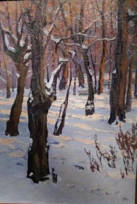 """Yevgeny Ivanovich Vostokov """"In the park CDSA."""""""