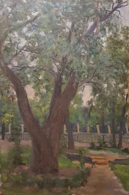 Кибардин Георгий Владимирович. Парк