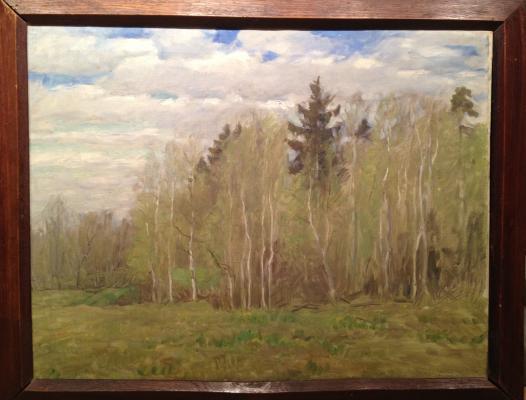 """Byalynitsky-Birulya V. K. """"Spring Day."""""""