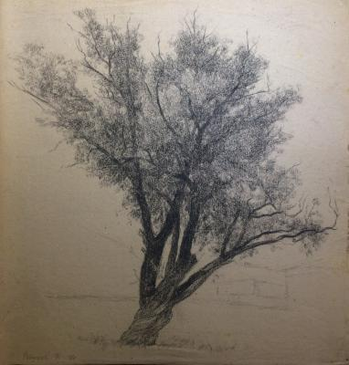 """Vaneyev P. I. """"Tree"""""""