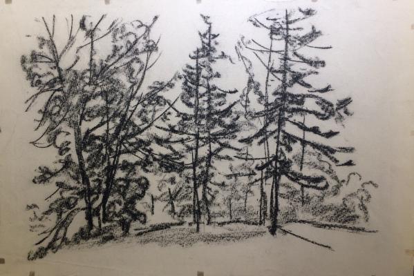 """Vaneyev P. I. """"Trees"""""""