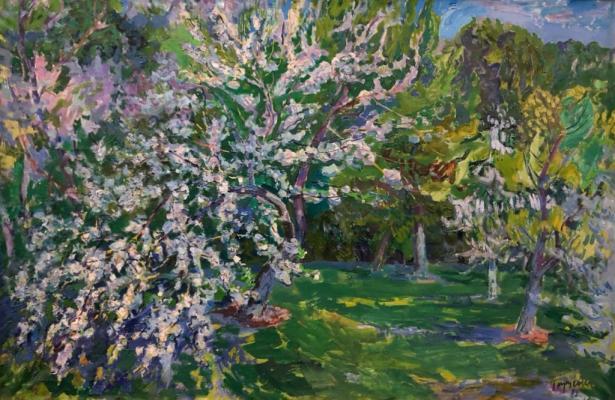 Глущенко Николай Петрович. Цветущий сад