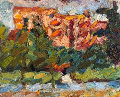 Турецкий Борис Захарович. Пейзаж с красным домом