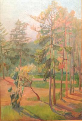 "Zaklikovskaya S. L. ""Pine trees illuminated by the sun ."""