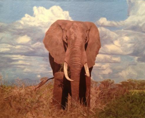"""Zelenskaya Y. """"Elephant"""""""