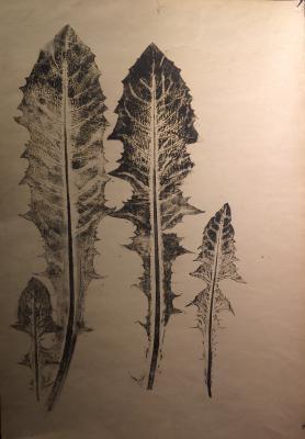 """Plavinsky D. P. """"Dandelion leaves."""""""