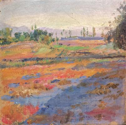 "Tatevosyan Y. M. ""Fields from the Vagharshapat Gardens"""