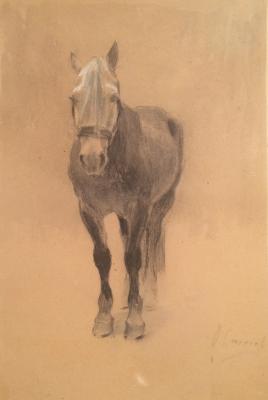 "Stepanov A. S. ""Horse."""
