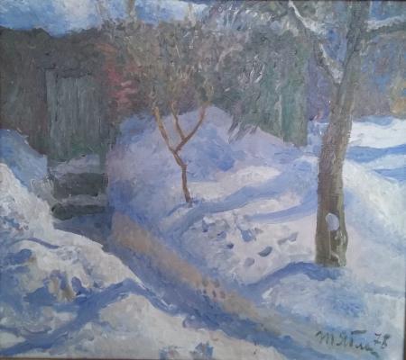 "Yablonskaya T. N. ""Winter sun."""