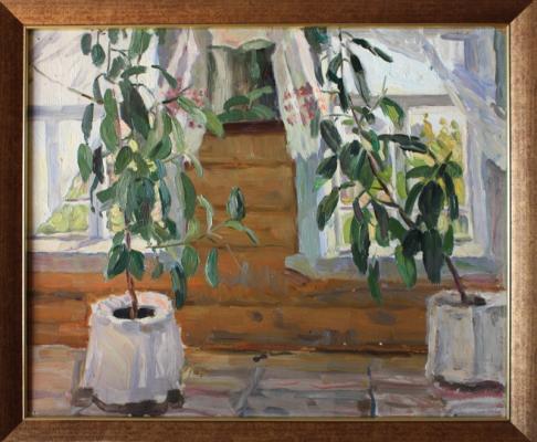 """Shevandronova I. V. """"Ficus ."""""""