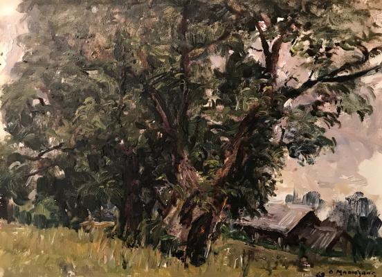 "Malyutina O. S. ""Landscape"""