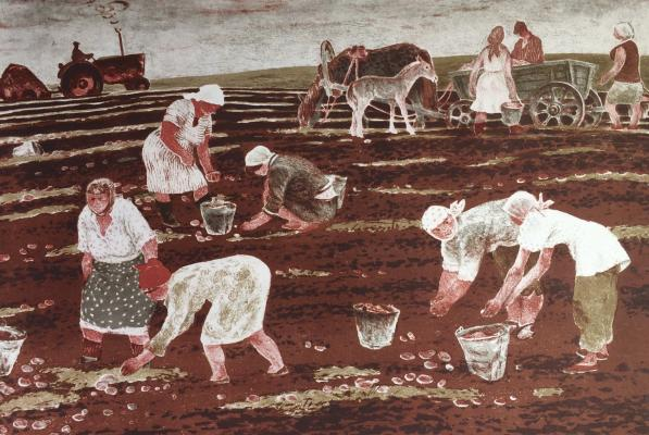 "Kalinycheva K. ""Harvesting potatoes."""