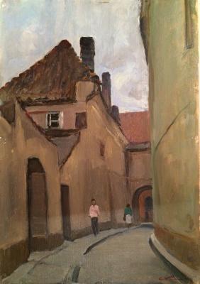 """Kamanin S. """"Street of Vilnius"""""""