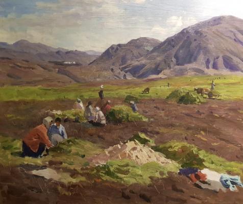 Папикян Альберт Степанович. Сбор урожая