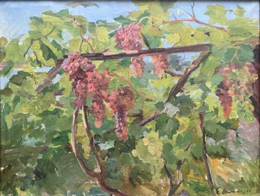 Асламазян Ерануи Аршаковна. Красный виноград на солнце