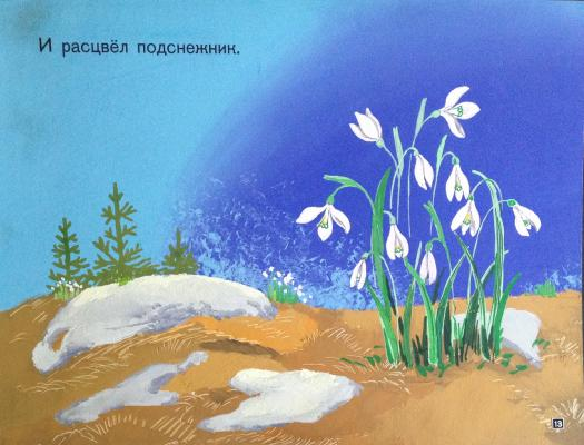 "Zebrova T. A. ""And bloomed snowdrop."""
