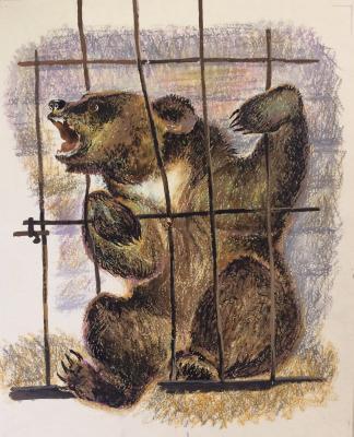 Зеброва Тамара Александровна. Медведь.
