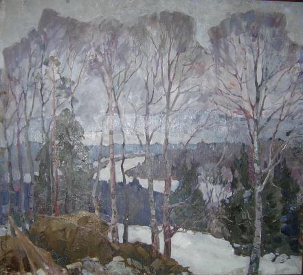 "Pimenov N. N. ""Spring North."""