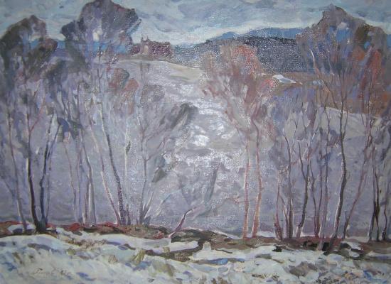 """Pimenov """"Vyatskyi North."""""""