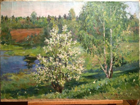 """Skorubskaya N. V. """"Bird cherry blossoms"""""""
