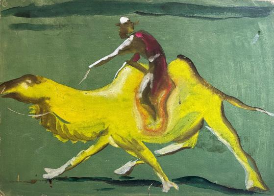 Джемаль Джаид Шамиль Оглы. Скачки на верблюде по зеленой пустыне Гоби