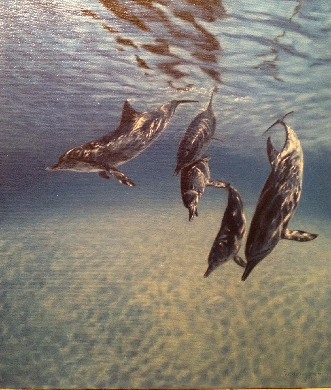Зеленская Евгения. Дельфины
