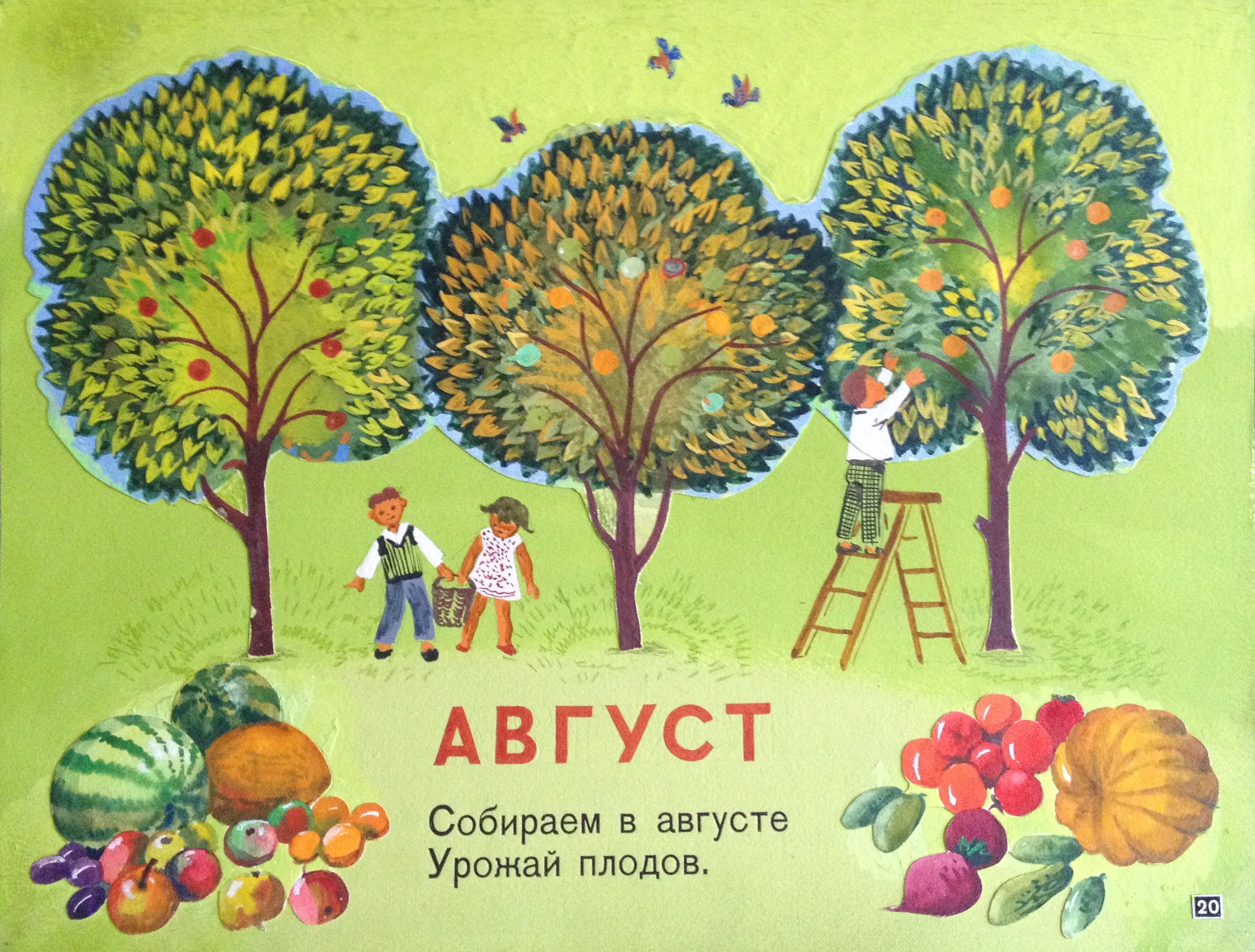 Зеброва Тамара Александровна. Август.