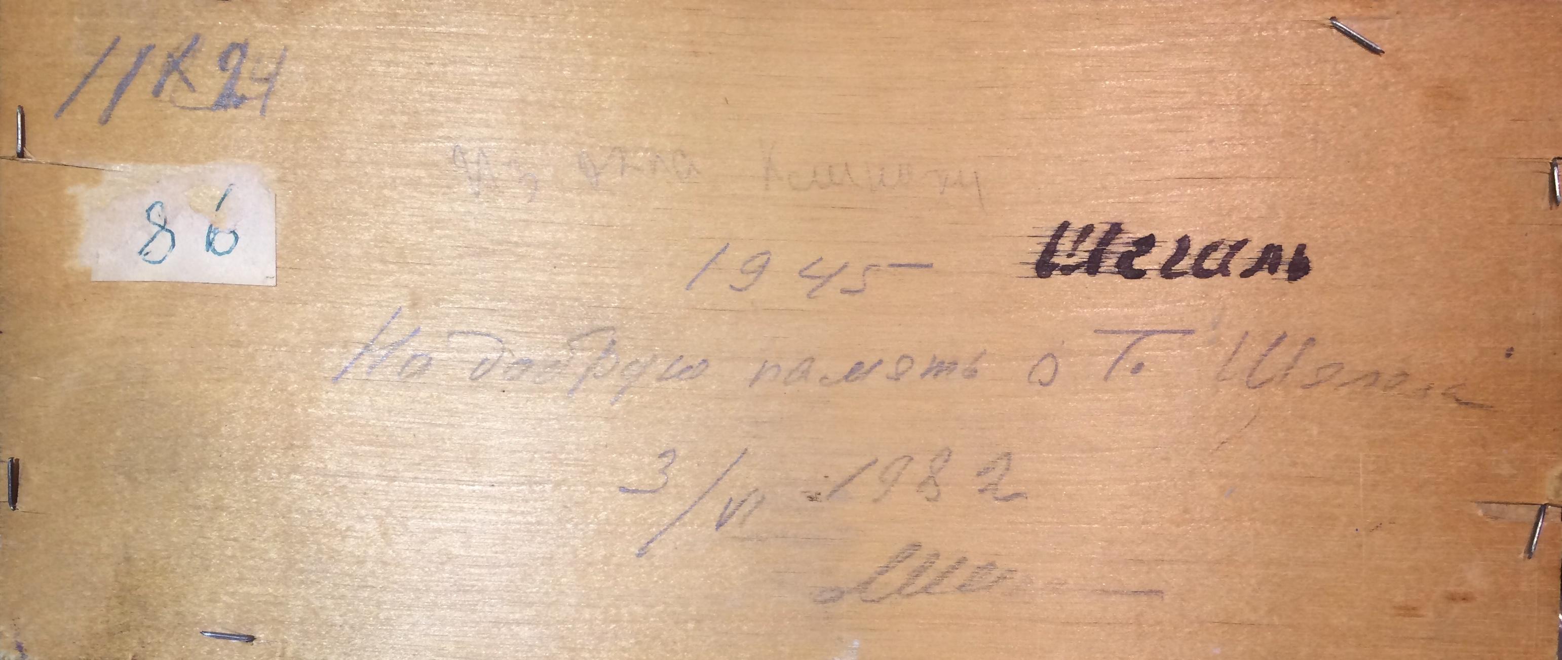 Оборот. Шегаль Григорий Михайлович. Из окна клиники.