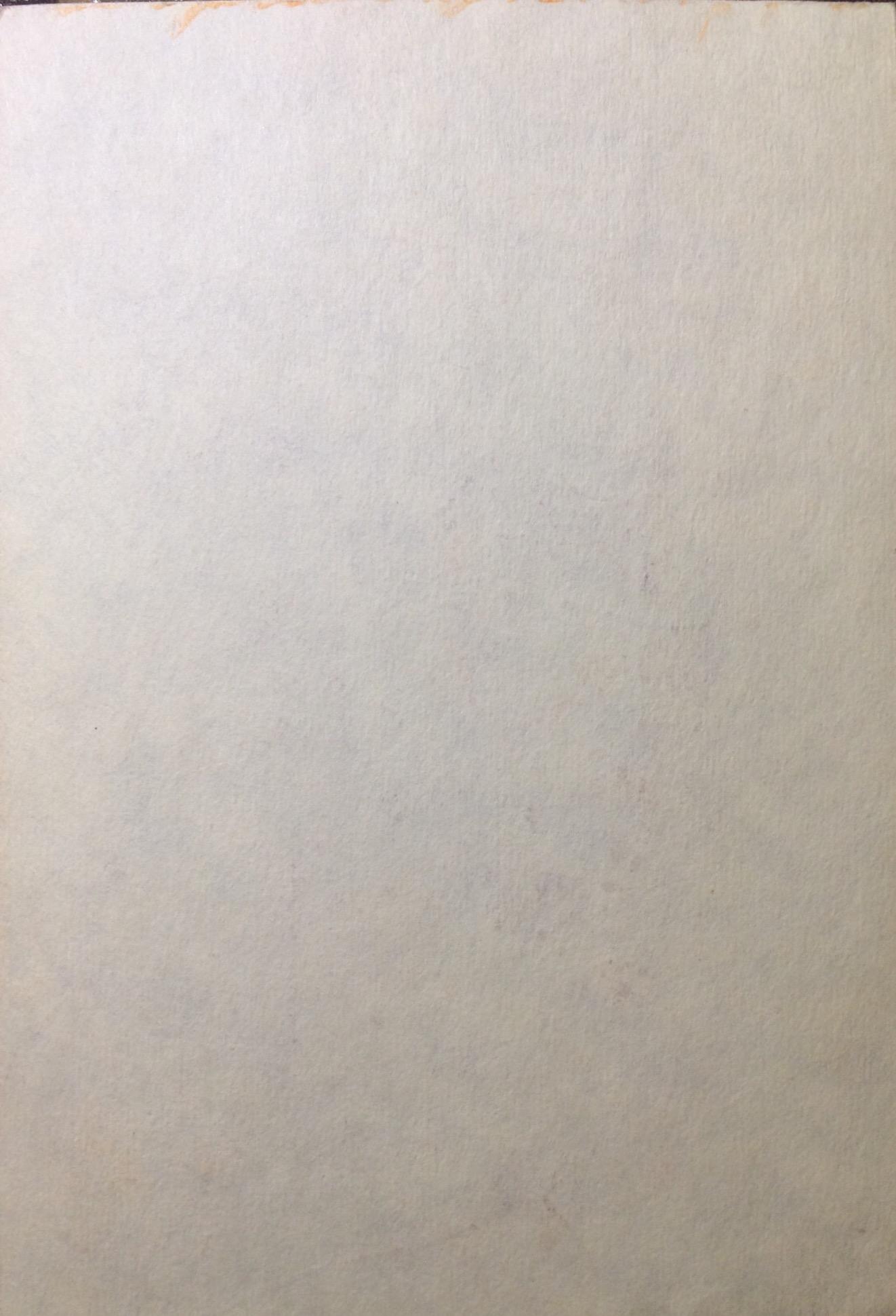 Оборот. Яковлев Владимир Игоревич. Фиолетовый портрет.