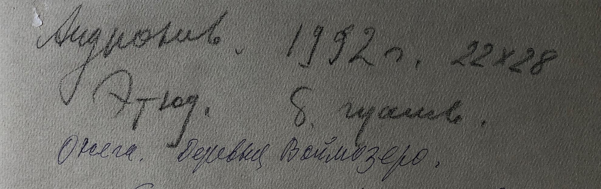 Оборот. Андронов Николай Иванович. Онега. Деревня Воймозер