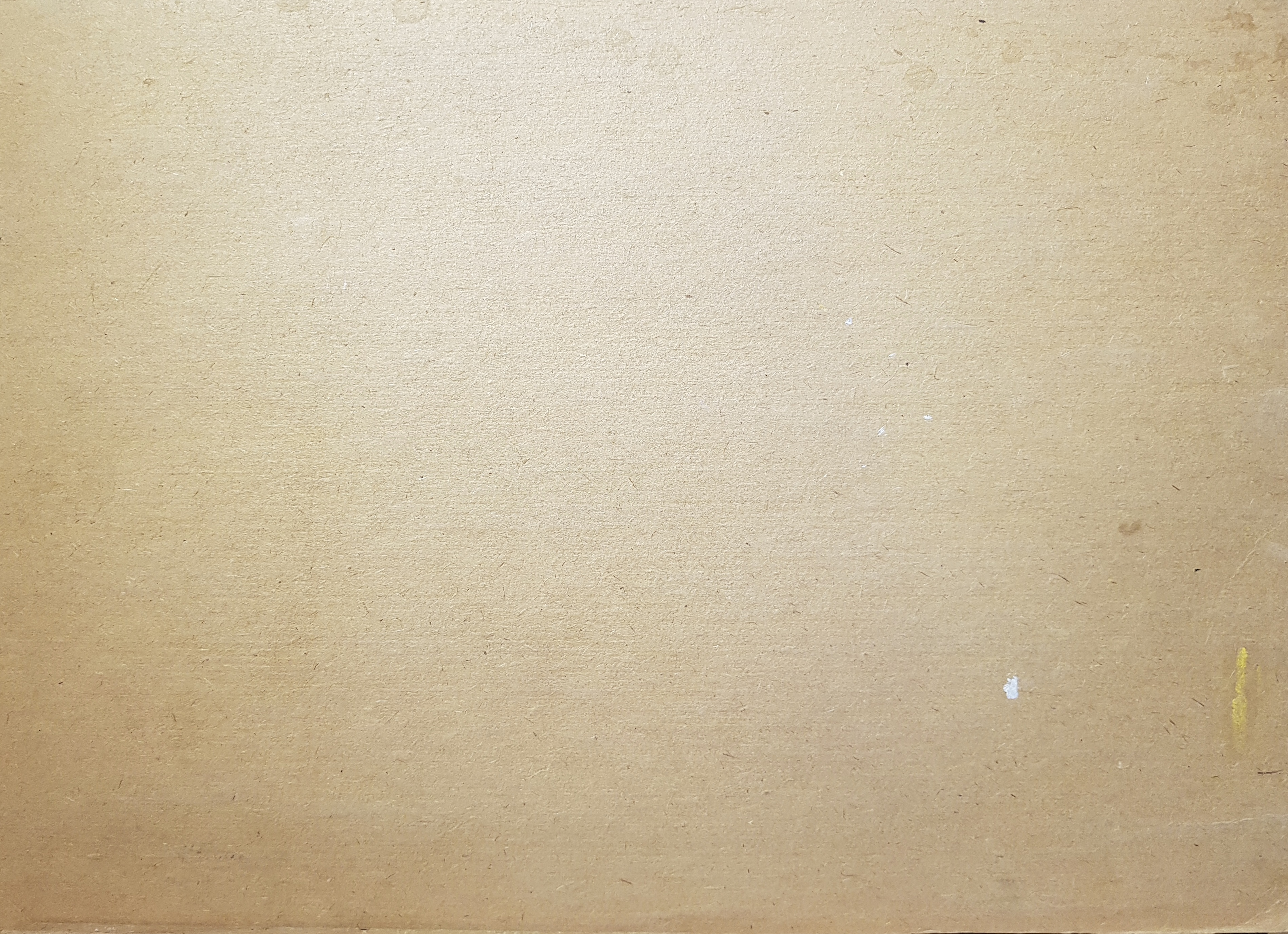 Оборот. Дехтерева Татьяна Александровна. Вид на красную площадь и Исакиевский собор