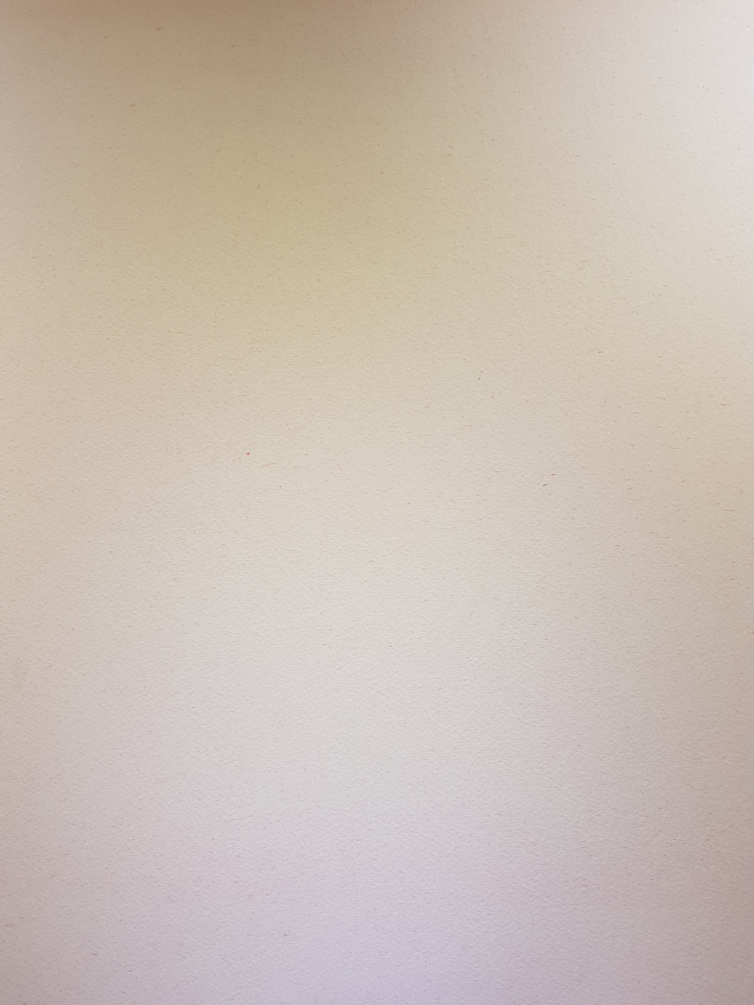 Оборот. Янкилевский Владимир Борисович. Без названия №1. Из цикла Женщина у моря
