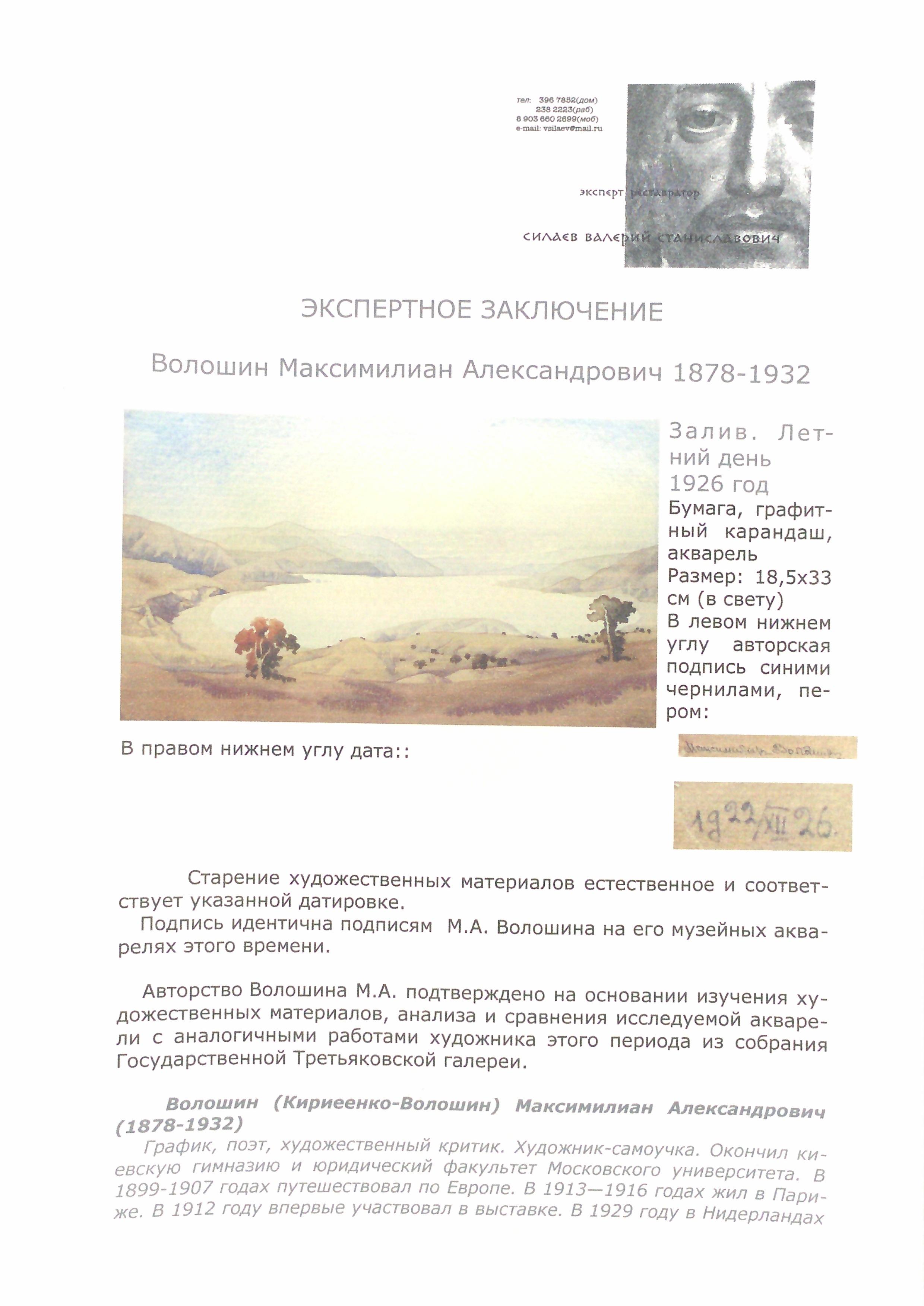 Эксперт. Волошин Максимилиан Александрович. Залив. Летний день.