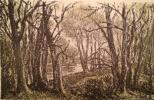 "Barto ""Trees by the lake"""